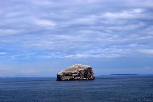 Bass Rock desde Tantallon Castle. East Lothian.